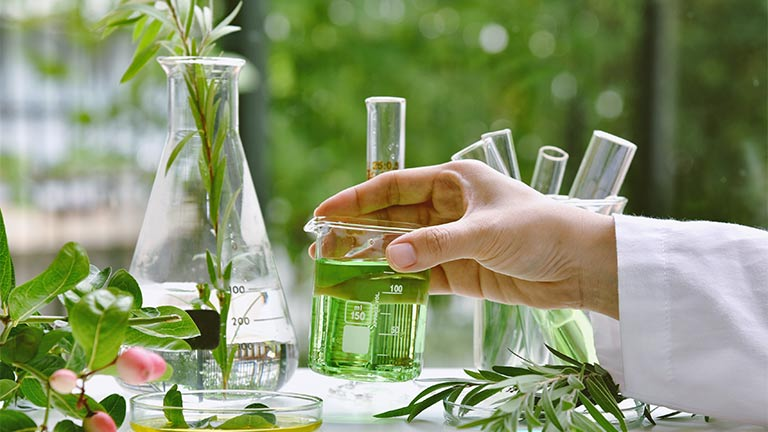 Herbs in the laboratory